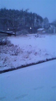 雪がざんざか降っているのだが